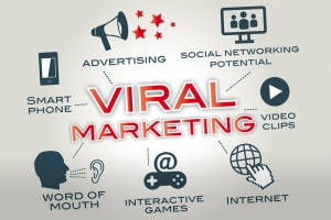 Drive Targeted Traffic to your Website